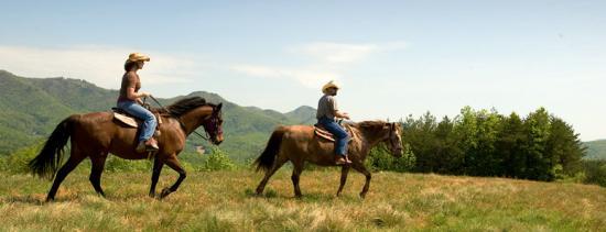 photos-activities-horseback-riding.jpg